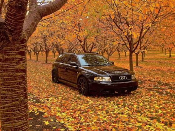 2001 Audi S4 Avant RS4 600HP